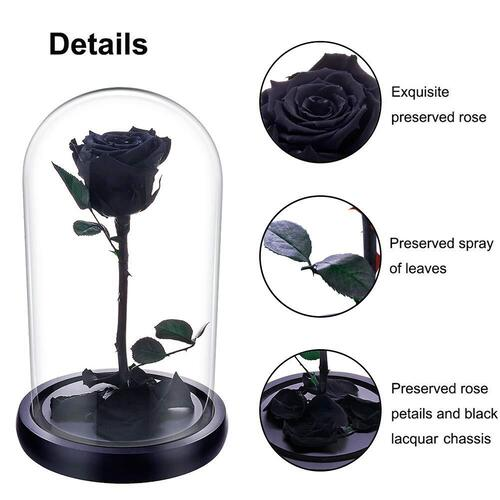 JaneDream Exquisite Preserved Fresh Rose with Wooden Stand and Glass Cover Romantic Gift Idea for Halloween