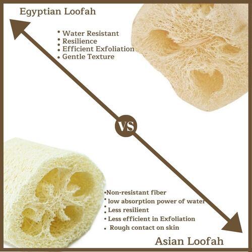 100% Natural Bath Loofah by CraftsofEgypt