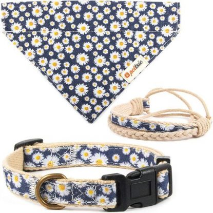 Pettsie Dog Collar with Friendship Bracelet and Bandana Gift Set