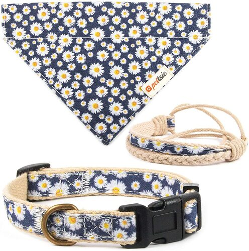 Pettsie Dog Collar with Friendship Bracelet and Bandana Gift Set