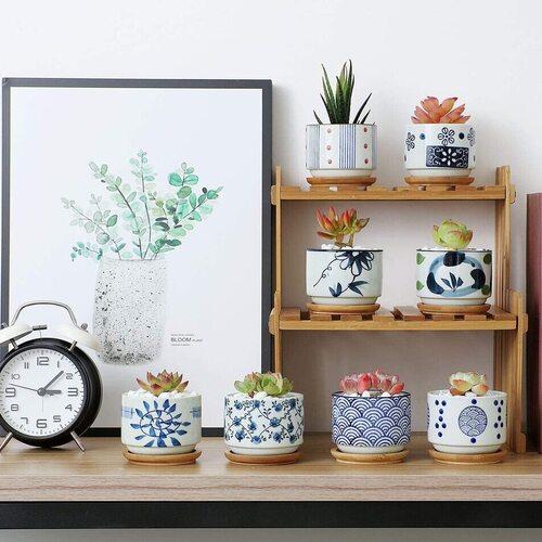 T4U ceramic succulent plant pot set of 8