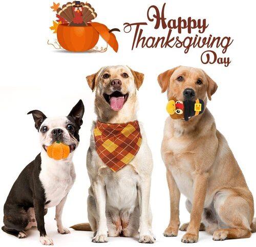 BINGPET Thanksgiving Dog Turkey Pumpkin Plush Toy with Cotton Rope and Polyester Bandana